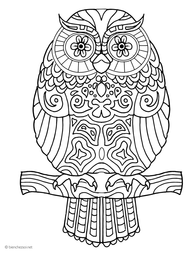 coloriage hibou ou chouette gratuit pour adulte dessin anti stress. Black Bedroom Furniture Sets. Home Design Ideas
