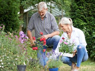 Jardiner serait aussi bon pour la santé que la gym