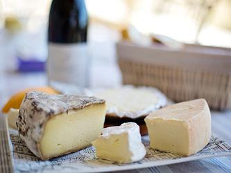 Manger du fromage augmenterait l'espérance de vie
