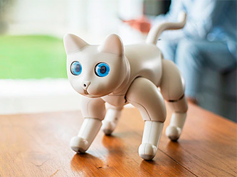 Votre prochain chat sera peut-être un robot