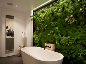 Un mur en mousse pour embellir votre intérieur