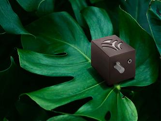 Une musique d'ambiance jouée par... vos plantes vertes