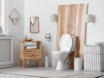 7 idées pour embellir facilement ses toilettes