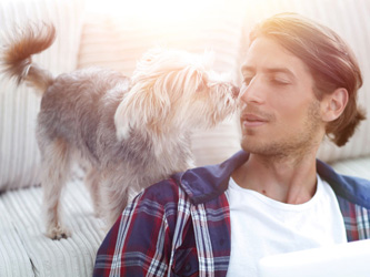Adopter un chien : comment bien choisir son compagnon