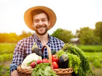 Une box pour apprendre à cultiver ses légumes à la maison
