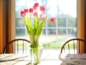 Une fleur pour chaque pièce de la maison