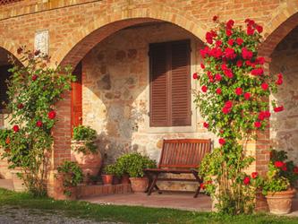5 idées pour fleurir votre façade