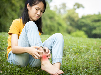 Piqûres d'insectes : prévenir et guérir