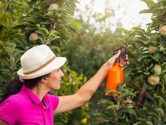 5 insecticides naturels pour jardiner tranquille