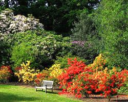 La passion du jardin