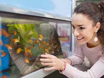 Les effets d'un aquarium sur notre santé