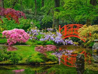 La Couleur Des Fleurs En Feng Shui Et Leur Place Au Jardin