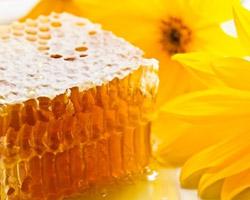 Adoptez les produits de la ruche