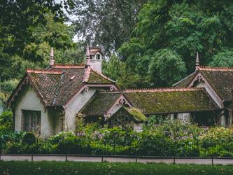 Mousse sur le toit : origine et solutions