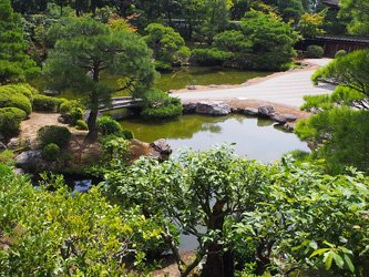 Les meilleures plantes pour un jardin zen