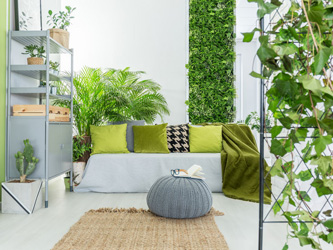 Quand les plantes s'affichent sur vos murs