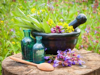 Les remèdes naturels contre les petits maux de l'été