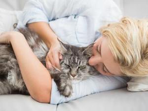 Zoothérapie : quand l'animal vous soigne